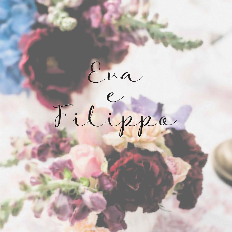 Progetti speciali Eva Filippo